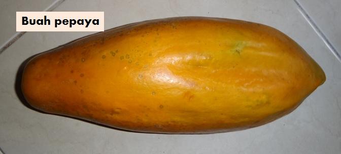Pepaya
